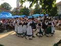 2013Waldfest014